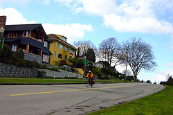 Point Grey houses
